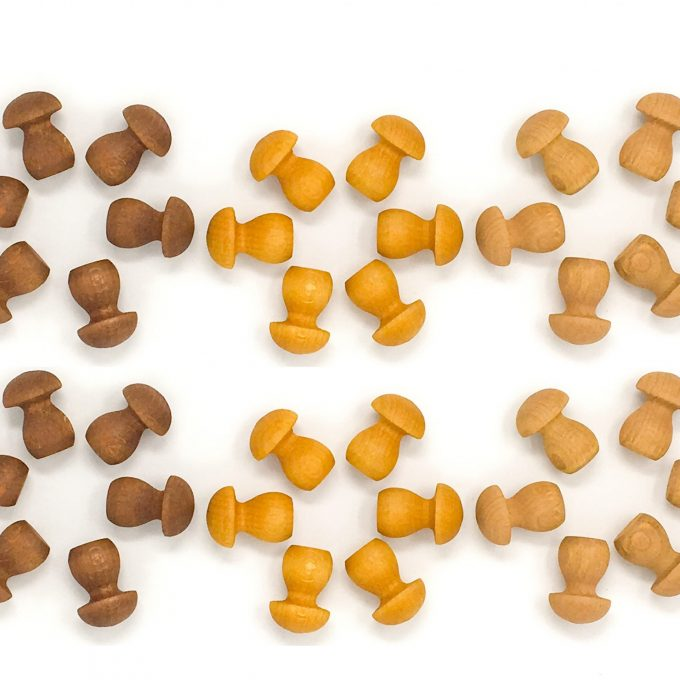 grapat mandala funghi-0