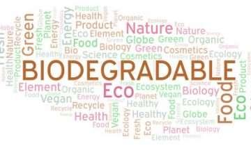 Biodegradabile e compostabile: facciamo chiarezza