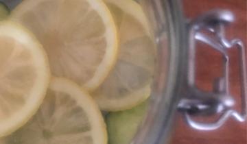 Le acque aromatizzate di Frida: cetriolo e limone