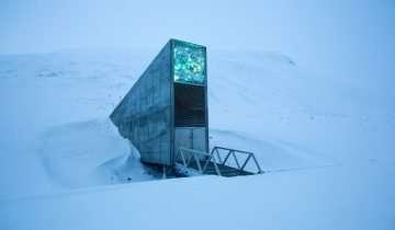 Il forziere delle sementi nascosto tra i ghiacci per salvaguardare l' ecosistema