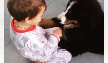 Gli animali come un dono per i nostri bambini